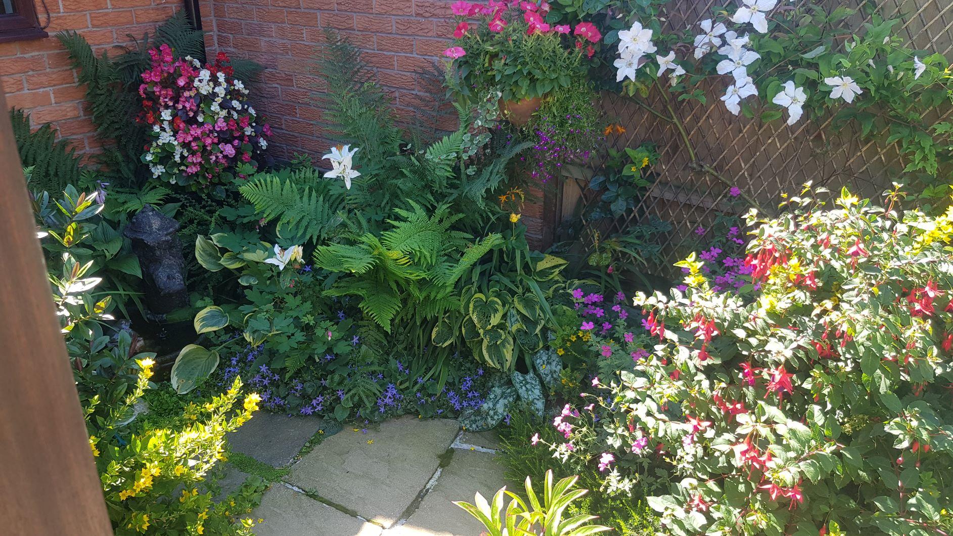 In Bloom Garden